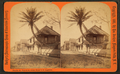 St. Francis St., Oldest house in St. Augustine, Fla, from Robert N. Dennis collection of stereoscopic views.png
