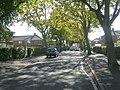 St Andrew's Avenue - St Andrew's Crescent - geograph.org.uk - 1509472.jpg