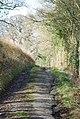 Stalbridge lane - metalled surface crumbling - geograph.org.uk - 669225.jpg