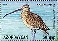 Stamp of Azerbaijan - 2009 - Colnect 387481 - Slender billed Curlew Numenius tenuirostris.jpeg
