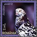 Stamps of Romania, 2005-107.jpg
