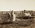 Standing stones at Kermario, Carnac, Britanny, France (4458857259).jpg