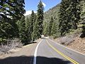 Stanislaus National Forest, Pinecrest, United States May 07, 2017 014223.jpeg
