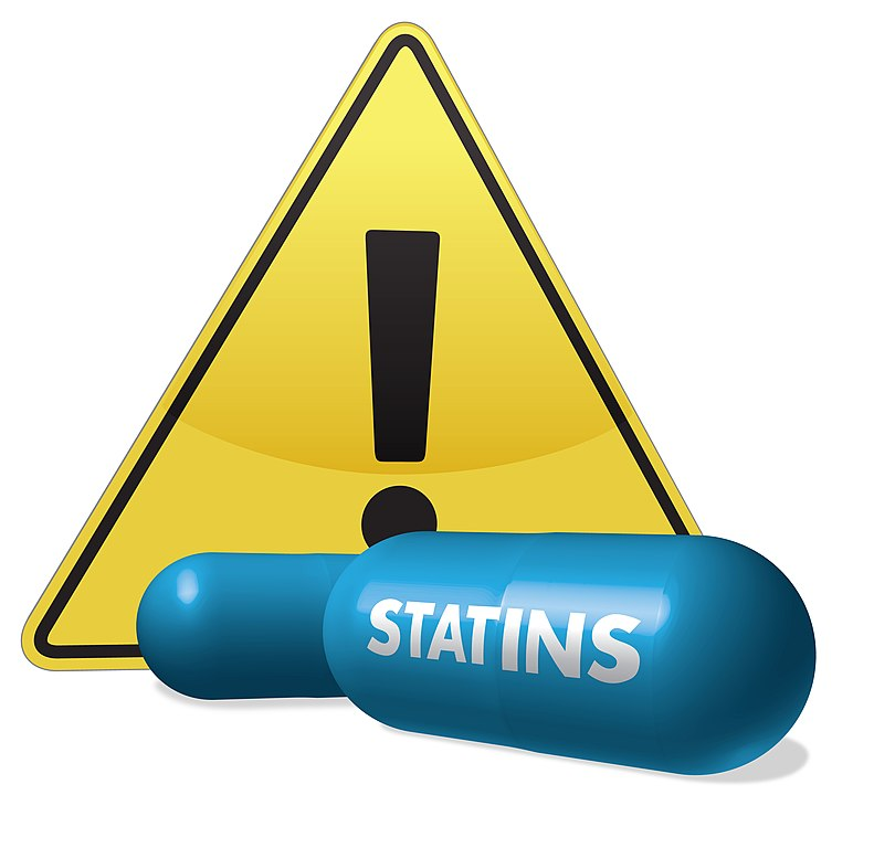 https://upload.wikimedia.org/wikipedia/commons/thumb/1/1c/Statin_Risks_(6941350219).jpg/791px-Statin_Risks_(6941350219).jpg