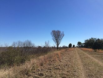 St. Marks National Wildlife Refuge - Biking/cycling trail