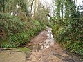 Stream Lane - geograph.org.uk - 1195243.jpg