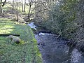 Stream at Edenwood - geograph.org.uk - 688540.jpg
