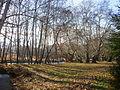 Strumeshnitsa river 2011, 01.JPG