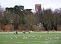 Sunday Soccer - geograph.org.uk - 630134.jpg
