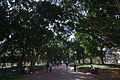 Sydney NSW 2000, Australia - panoramio (257).jpg