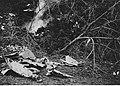 Szczątki bombowca alianckiego zestrzelonego na froncie włoskim (2-2444).jpg