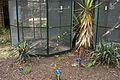 TU Delft Botanical Gardens 19.jpg