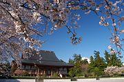 Taisekiji-Kyakuden-sakura-Fuji