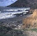 Talland Bay - geograph.org.uk - 664862.jpg