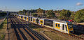 Tangara train near Tempe station.jpg