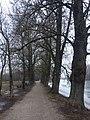 Tartu - -i---i- (32624894755).jpg