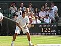 Taylor Dent Wimbledon.jpg