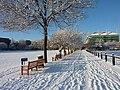 Tcd-snow.jpg
