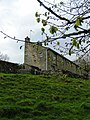 Terrace Houses from the River Bank, Burnsall - geograph.org.uk - 1271715.jpg