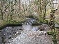 The Afon Arran - geograph.org.uk - 1177966.jpg