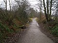 The Cycleway to Threlkeld - geograph.org.uk - 121500.jpg