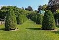 The Elms garden.jpg