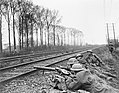 The German Spring Offensive, March-july 1918 Q8689.jpg