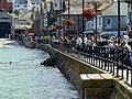 The Harbour, St Ives - geograph.org.uk - 1576503.jpg