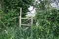 The Hidden Footbridge - geograph.org.uk - 466564.jpg