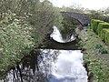 The Old Bridge of Tarff - geograph.org.uk - 406473.jpg