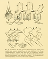 The Osteology of the Reptiles-116 uihguh.png