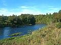 The River Ayr - geograph.org.uk - 578980.jpg