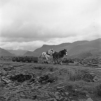 Tramway (industrial) - A horse-drawn tram carrying slate at Dyffryn Nantlle in Wales, 1959.