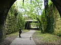 The light at the end of the tunnel - geograph.org.uk - 567911.jpg