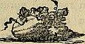 Theodr. Petri Caelsi Ratio occurrendi morbis a mineralium abusu produci solitis - Accedit Lucas Dorascentius De usu chalybis atque mercurii in obstructione curanda (1783) (14586302810).jpg