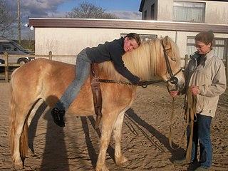 Hipoterapia - liečba s využitím koní