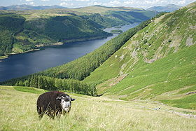 Image illustrative de l'article Parc national du Lake District