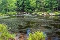 Tobyhanna Creek (4) (21178984458).jpg