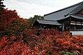 Tofuku-ji (4585129903).jpg
