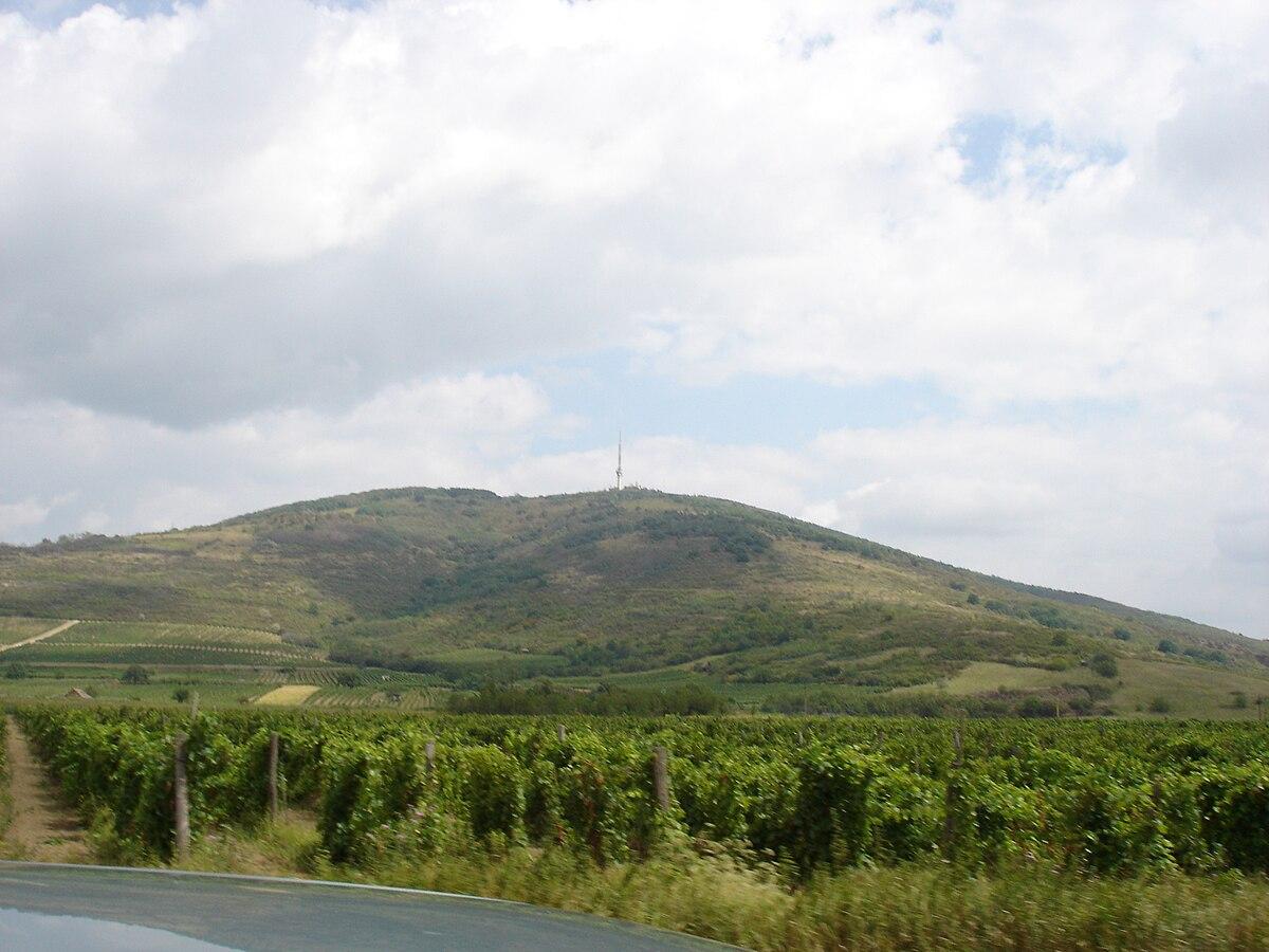 Kopasz-hegy (Zempléni-hegység) – Wikipédia be316f6451