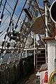 Tonnerres de Brest 2012 - 120717-018 Belem.jpg