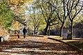 Toronto - High Park (6567385849).jpg