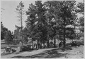 Tourist camp at Bryce Canyon. - NARA - 520221.tif