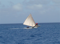 Traditional sailing canoe in the Marshall Islands.png