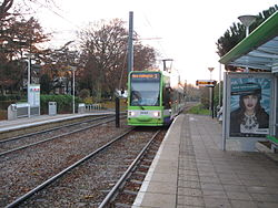 Tram 2545 Lloyd Park stop.JPG