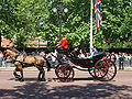 Trooping the Colour 2009 040.jpg