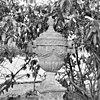 tuinvaas - loenen aan de vecht - 20141368 - rce