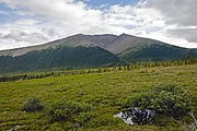 Tundra landscape with mountain, Ivvavik National Park, YT.jpg