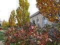 U.S. Botanic Garden in November (23782642426).jpg