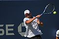 US Open Tennis 2010 1st Round 217.jpg